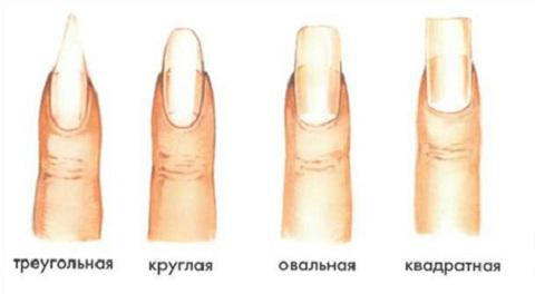 заболевания ногтей  podologdpua
